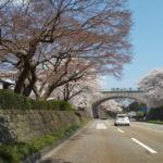 2020/04/04 Demio&JA07 ご近所でお花見