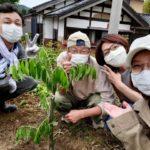 2020/05/31 六兵衛's Garden 植栽(花桃)