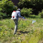 2020/06/08 六兵衛's Garden 除草剤散布